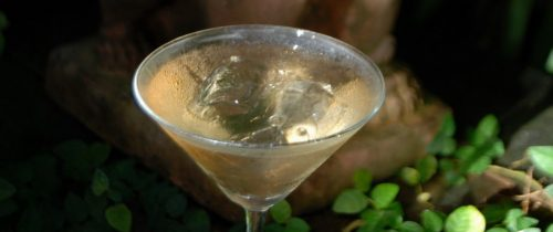 Southeast Asian ice cubes debate – to drink or not to drink??