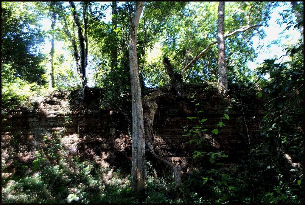 Angkor Tom, emerging at the east wall