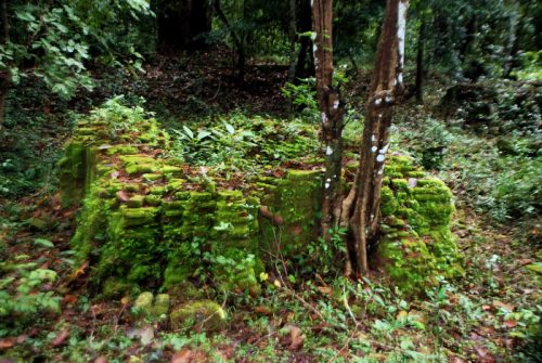 Kapilapura - a lost Angkor 'suburb' in the jungle!?