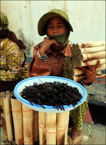 Spider vendor, Skuon