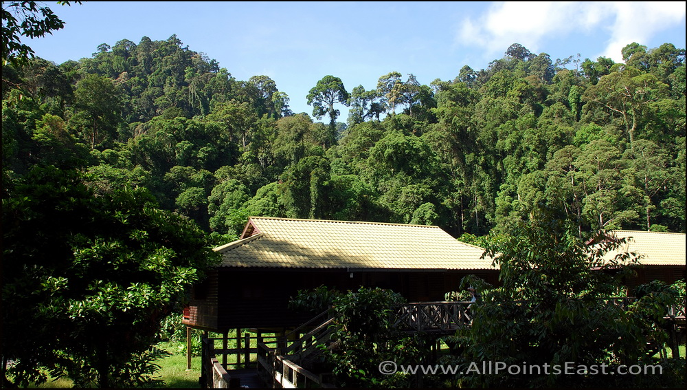 Danum  Valley, Borneo Rainforest Resort