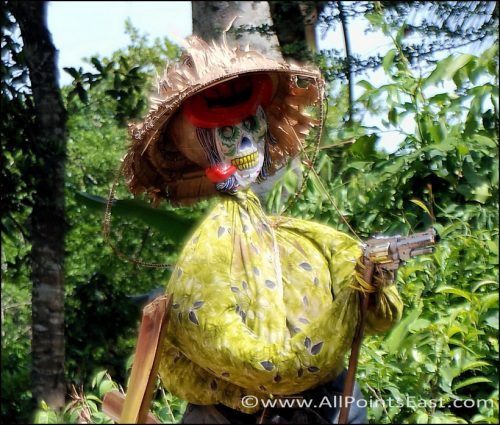 Armed and dangerous - Cambodian scarecrows