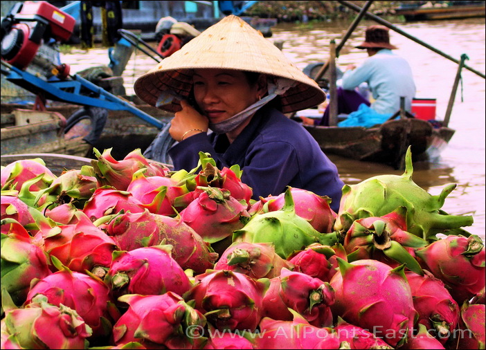 Can Tho floating market. Vietnamese dragon boat?