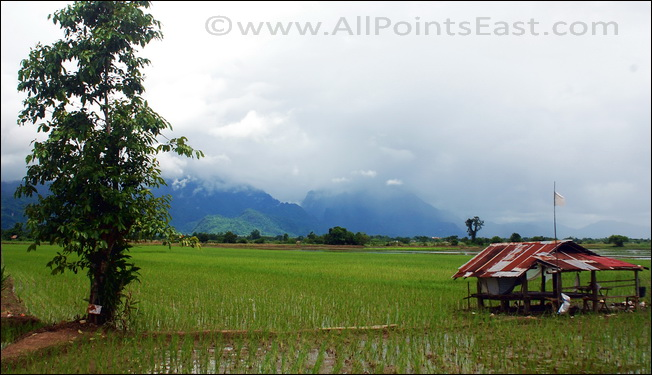 Paddy-fields of Lanna - the 'kingdom of a million rice fields' - needed workers