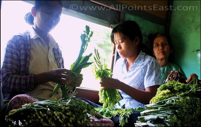 Preparing the vegtables for market