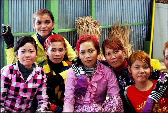 Colourful weavers at Prek Toal