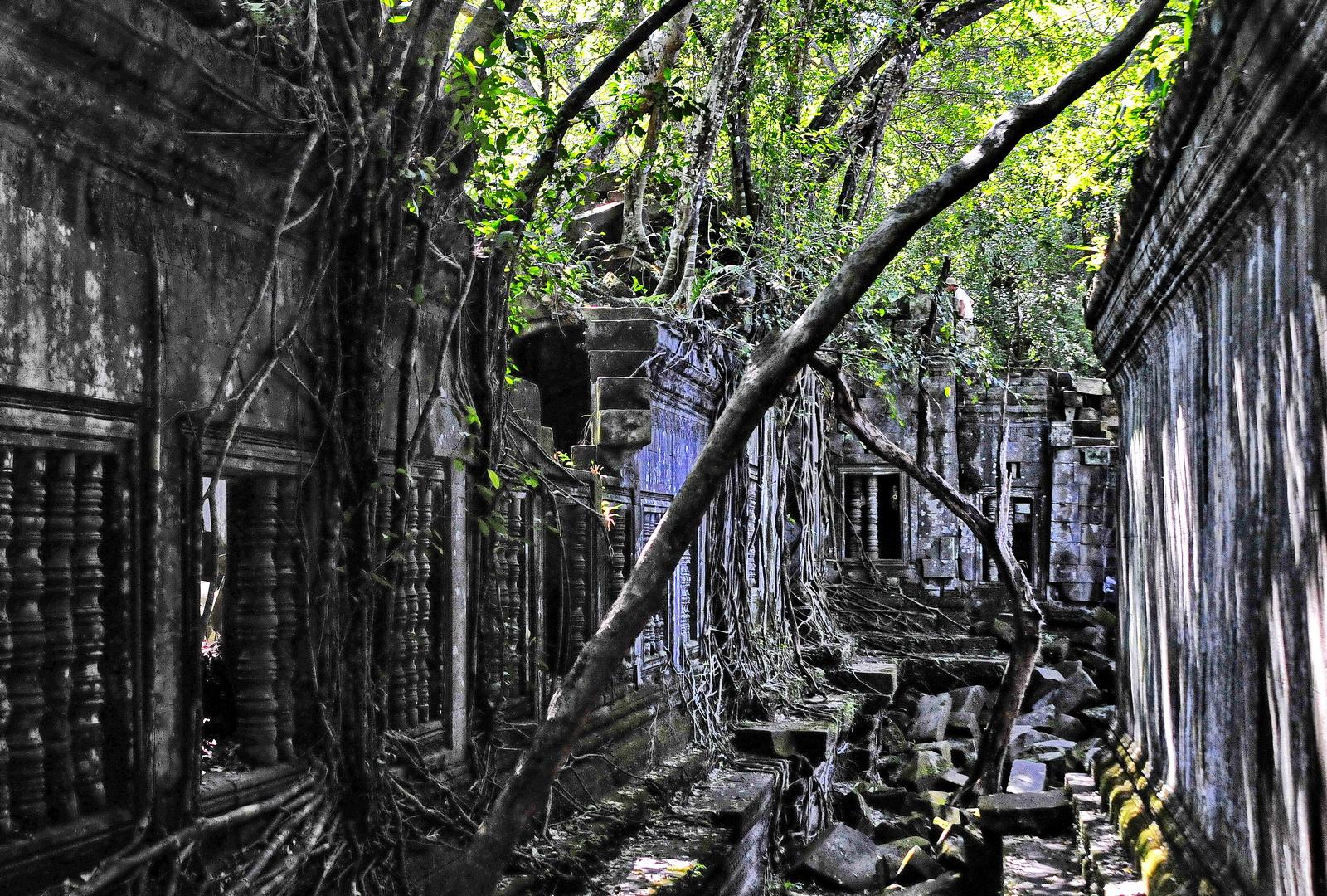 Cambodia, Beng Melea