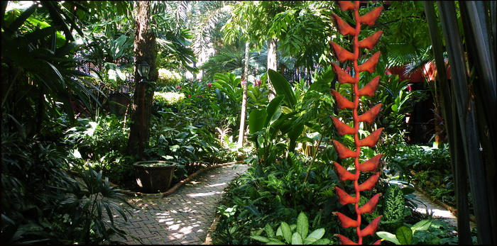 The lush garden at Jim Thompson House