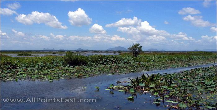 Thai National Parks. Thale Noi, Phattalung