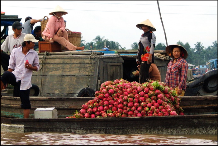 Chau Doc's floating market