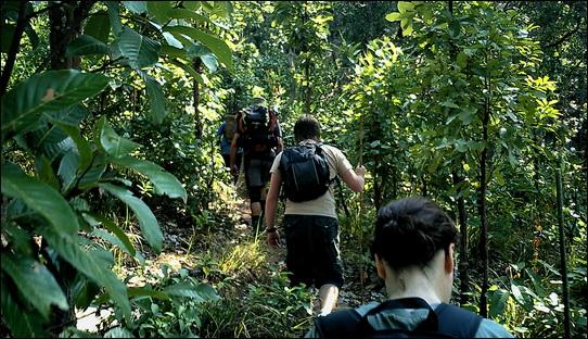 Trekking/rambling/hiking/walking, (delete as necessary), Mae Charim, Thailand