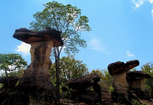 Photos of Pha Taem National Park, Ubon Ratchathani, Thailand
