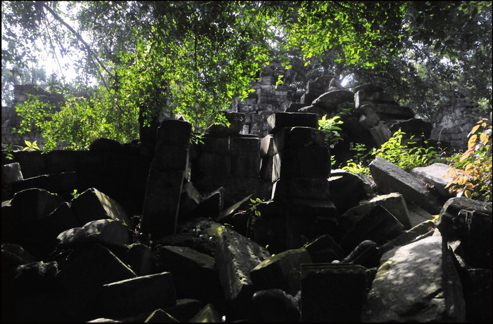 Trees and a pile of stones - Preah Khan again