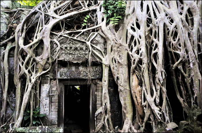 Ditto - probably the most photographed doorway at Angkor!