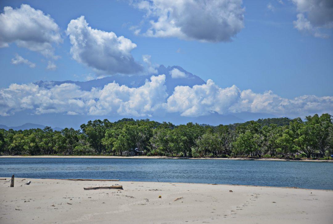 Malaysia, Borneo, Sabah tour mangroves and Mt Kinabalu
