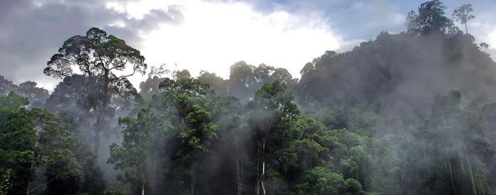 Malaysia - Borneo tour, 'Borneo Adventure'