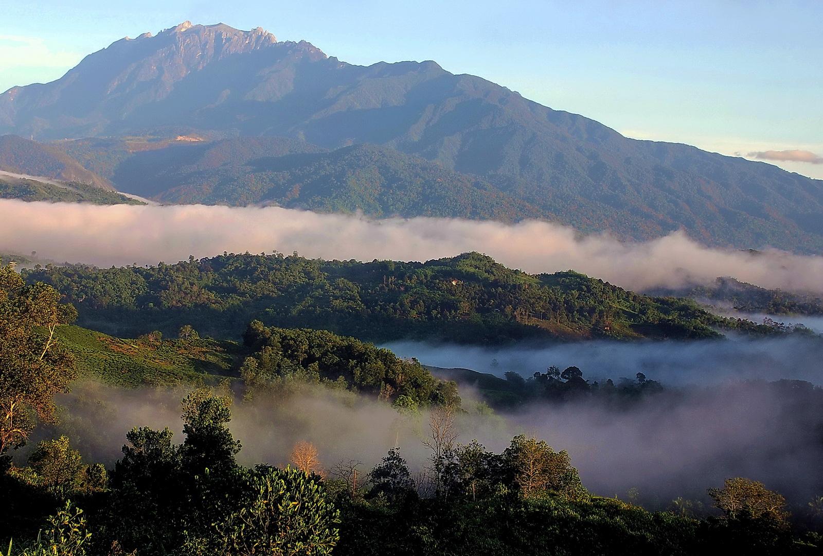 Malaysia, view from Sabah Tea
