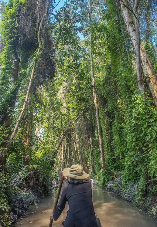 Vietnam, Xe Quit by Jeff Perigois