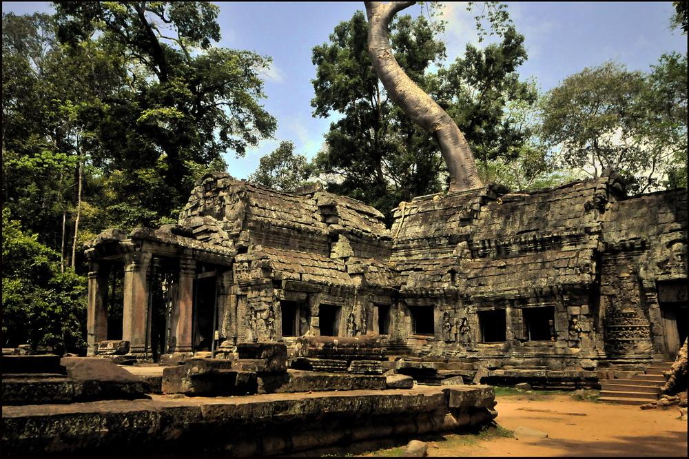 Ta Prom, Angkor