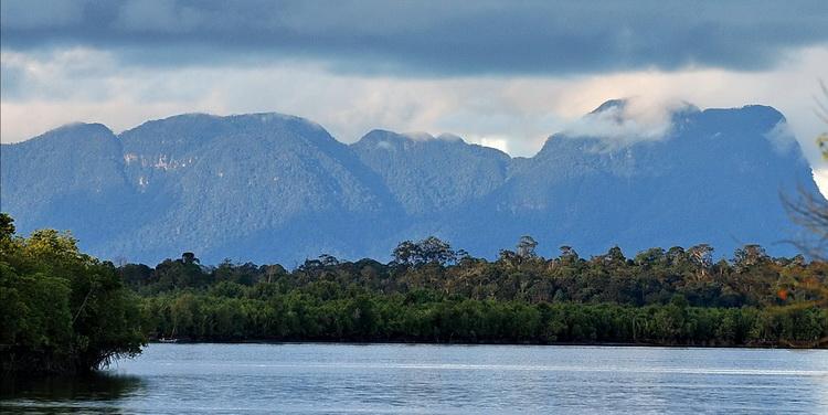 Sarawak River Estuary