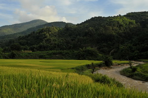 Scenery between Kengtung and Tachileik