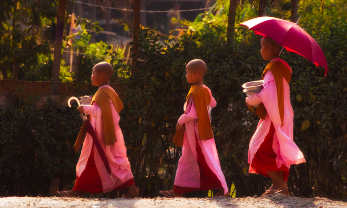 .......and the pink clad nuns