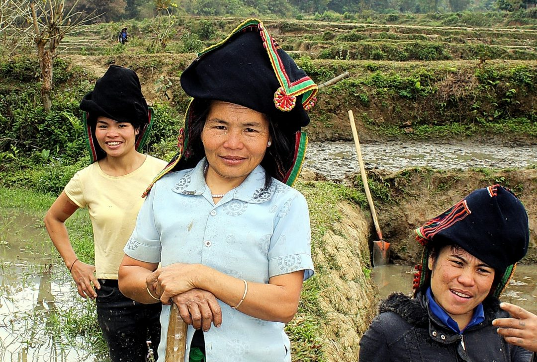 Laos, Black Tai farmers