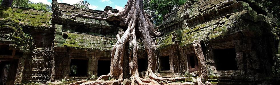 Cambodia Ta Prom Temple