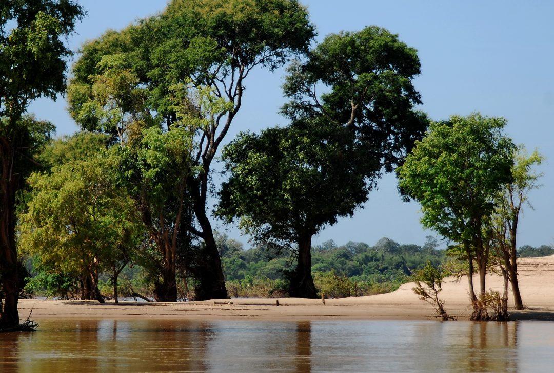Cambodia, Mekong wetlands