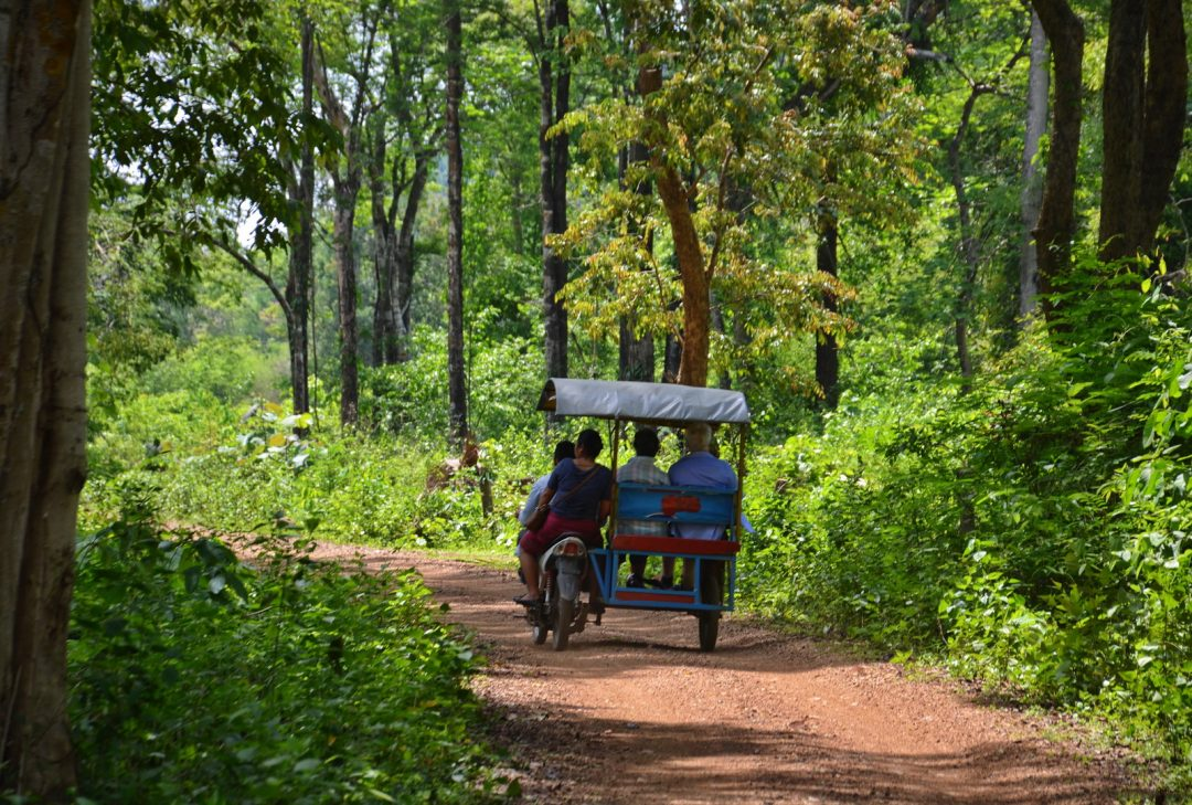 Laos, jungle tuk-tuk on Don Khone