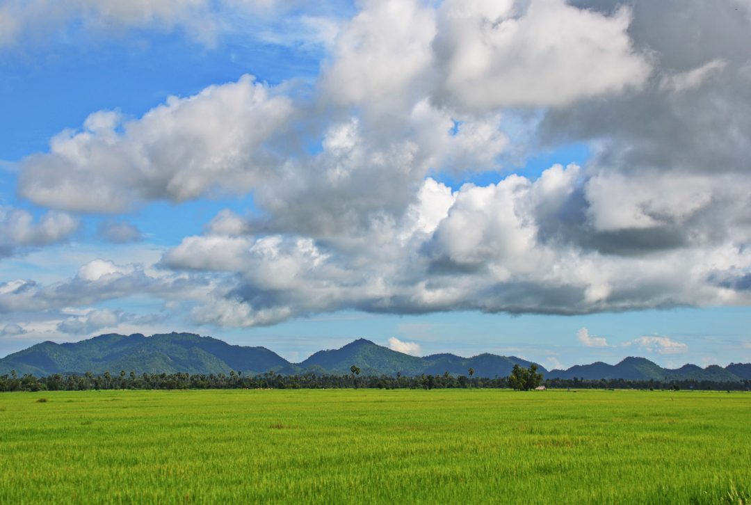 Cambodia overland, rural scene