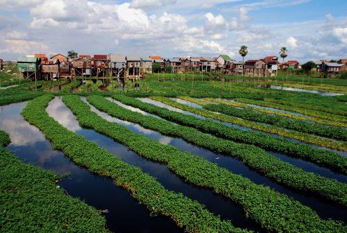 https://allpointseast.com/wp-content/uploads/2013/04/Phnom-Penh-suburb-2-500x336.jpg