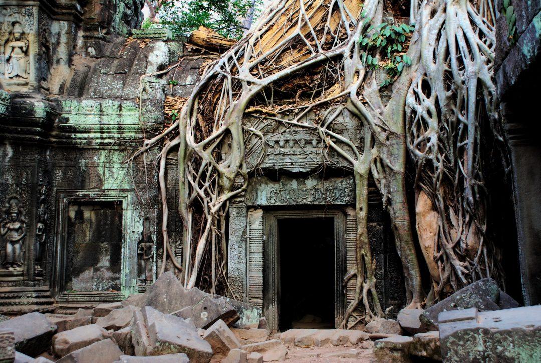 Cambodia, Ta Prom Temple