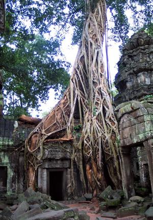 Vietnam and Cambodia overland, Saigon to Phnom Penh