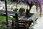 Riverside Guesthouse, Lampang
