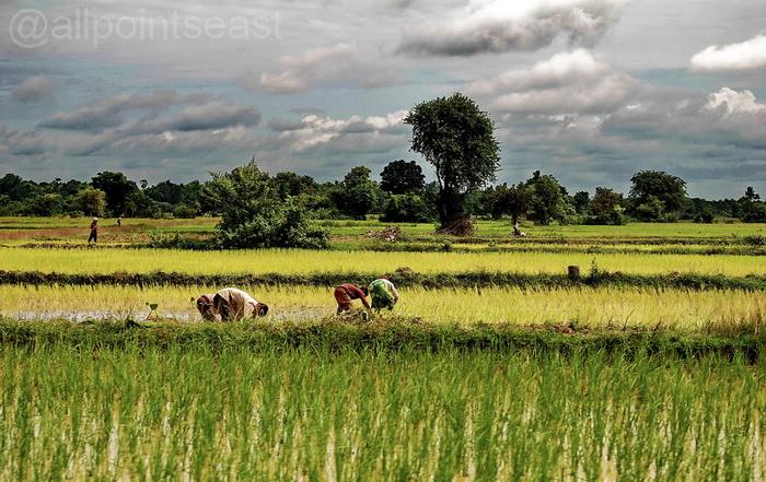 Rural scene outside of town, Battambang