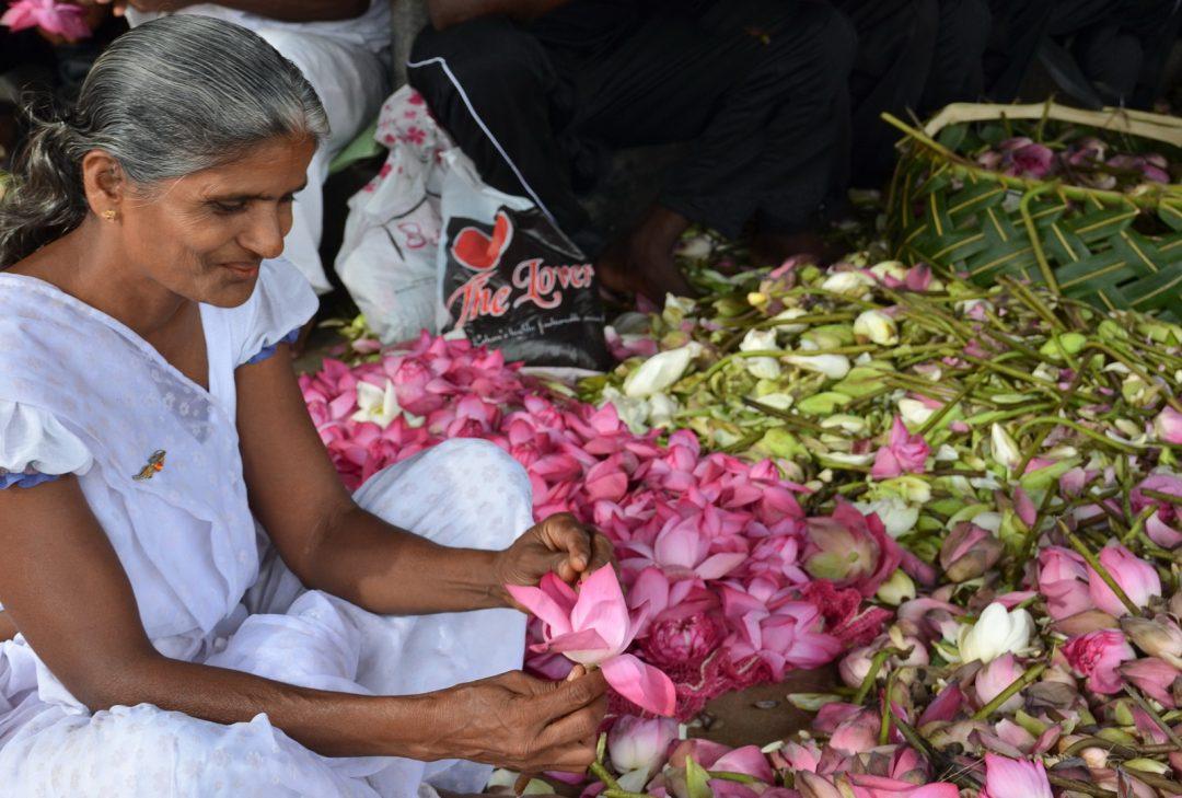 Sri Lanka Discovery, Anuradhapura