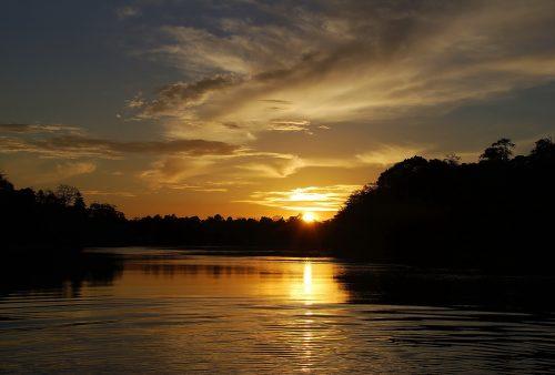 https://allpointseast.com/wp-content/uploads/2017/01/Kinabatangan-River-15-500x338.jpg
