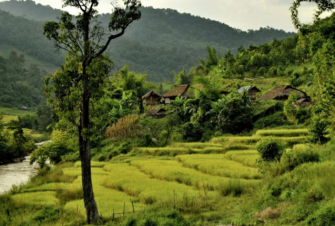 Burma, scenery near Tachileik