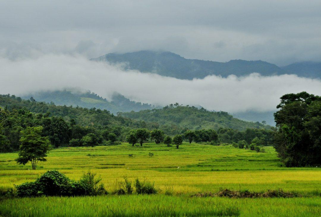 Burma, paddyfields near Kengtung