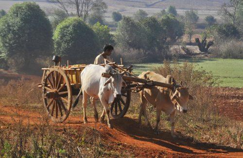 Burma, Shan Plateau scene