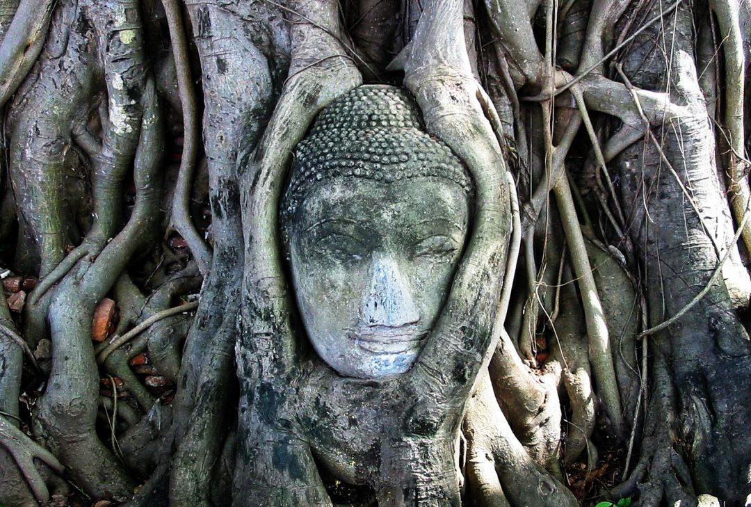 Bangkok and Ayuthaya tour, Thailand, iconic Buddha image at Ayuthaya