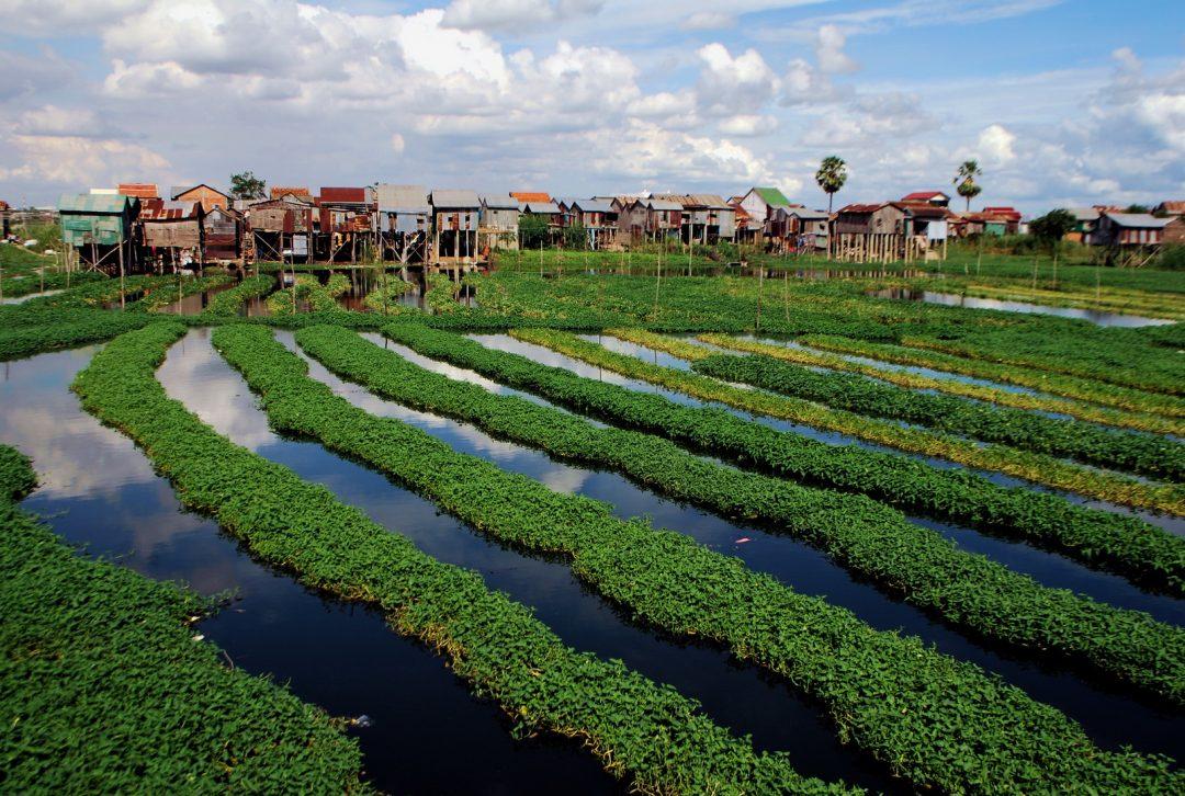 Cambodia, Phnom Penh suburbs