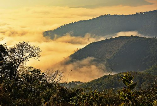 <br /> <b>Warning</b>:  Illegal string offset 'alt' in <b>/home/pixelonp/public_html/allpointseast.com/wp-content/themes/ape-skin/single-destination.php</b> on line <b>138</b><br /> h