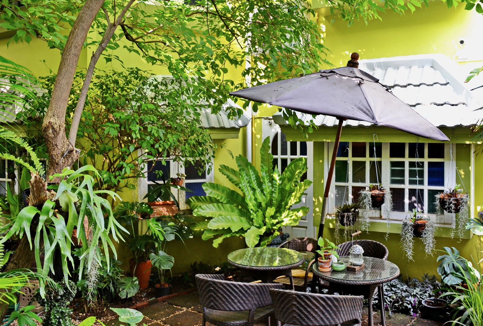 Hidden Thailand Tour accommodation, 20 Lodge, Chiang Mai