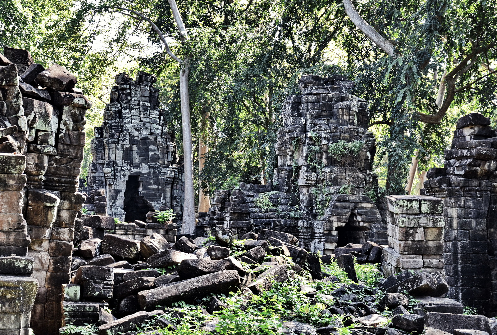 Banteay Chhmar, The encroaching jungle
