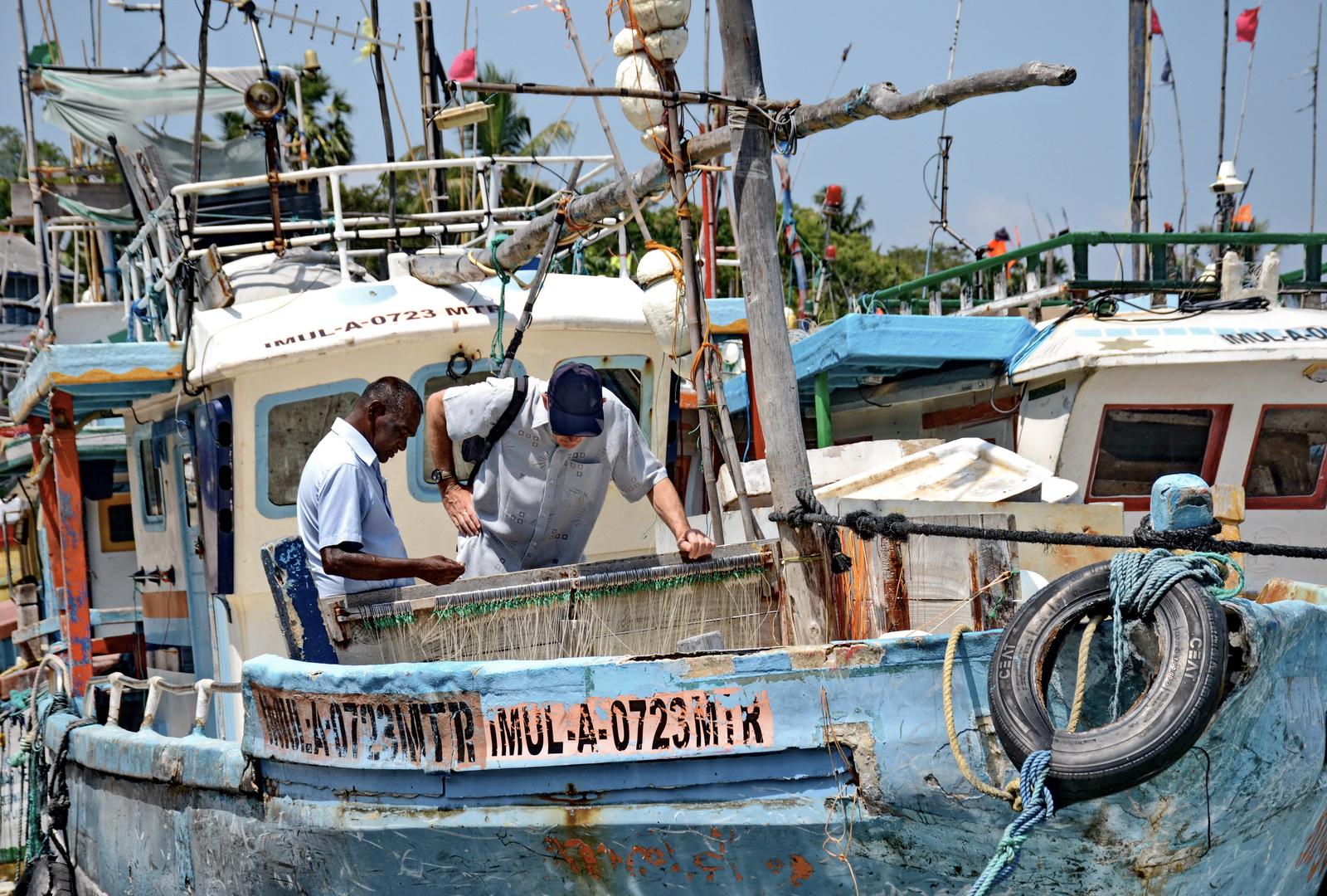 Sri Lanka. Tangalle fishing port