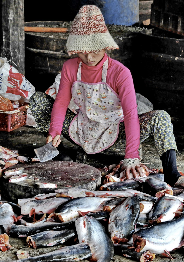 Cambodia, the fish market, Ek Phnom
