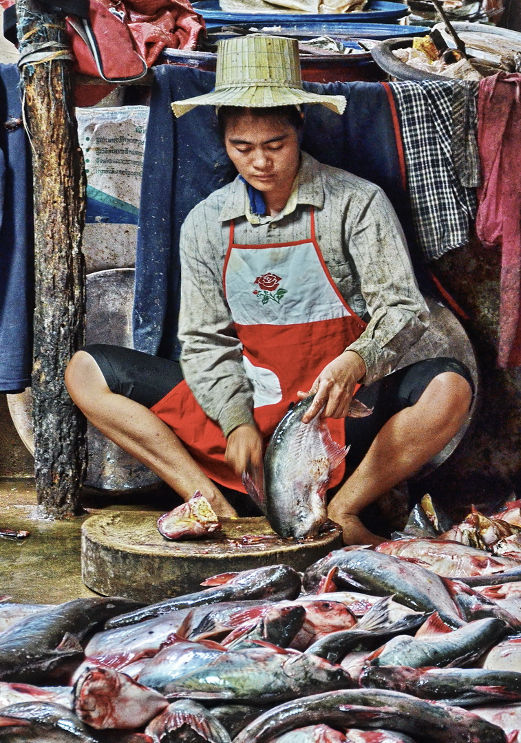 Cambodia, Phsa Prahok 4