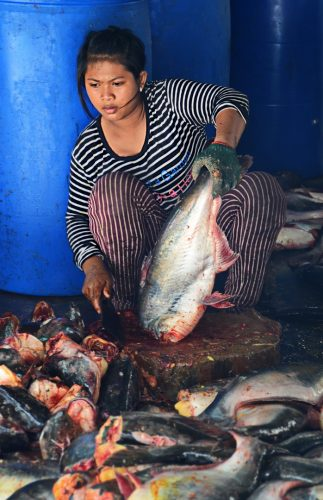 Cambodia, Phsa Prahok 5